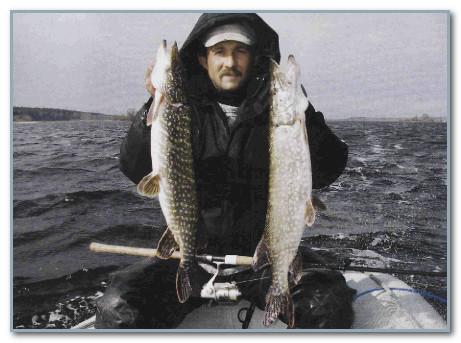 где ловить рыбу на рыбинском водохранилище