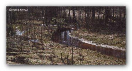 Заброс спинига на щуку в лесной речке