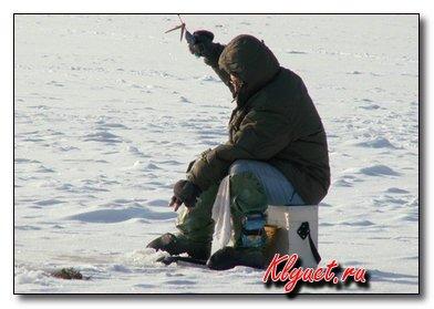 Живцовая удочка для зимнего лова