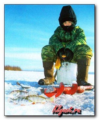 провокатор активности рыб