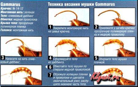 Провокатор активизации рыб
